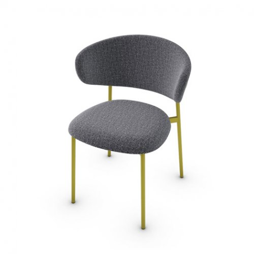 CS2031 OLEANDRO Frame P33L met. PAINTED BRASS Seat SLW Bouclé ANTHRACITE GREY